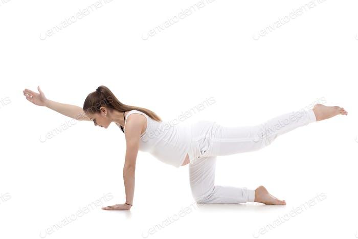 Prenatal Yoga, Sunbird pose