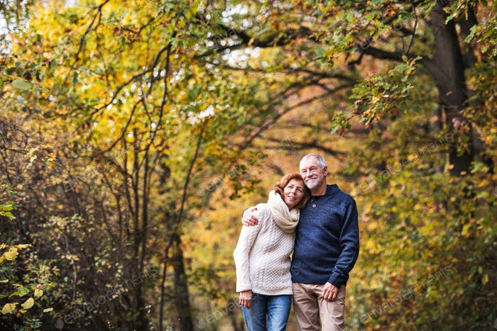 A portrait of a senior couple standing in an autumn nature. Copy space.