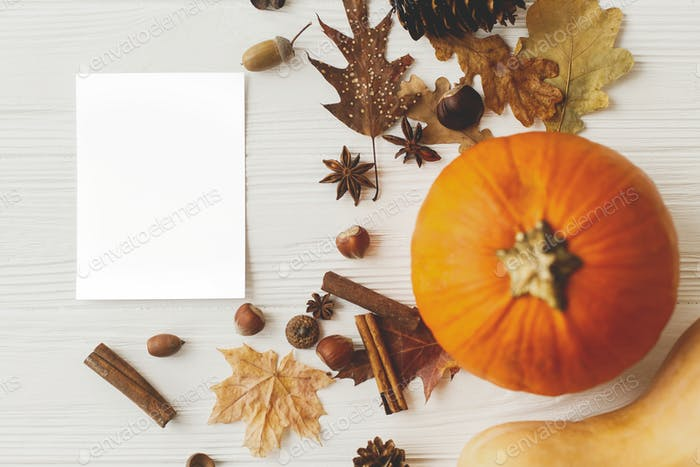Empty postcard template, autumnal flat lay