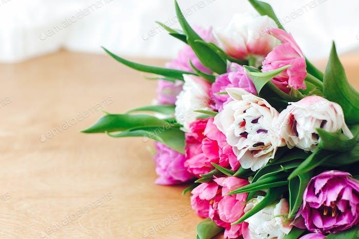 Schöne rosa und lila Tulpen in weichem Licht