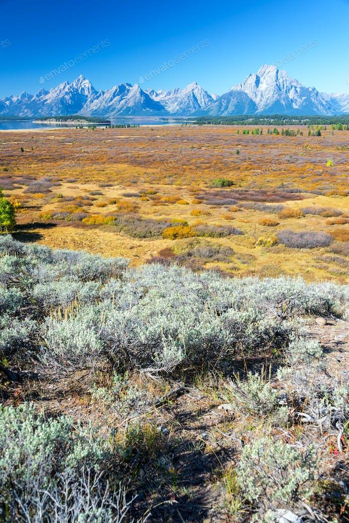 Vertical Teton Range