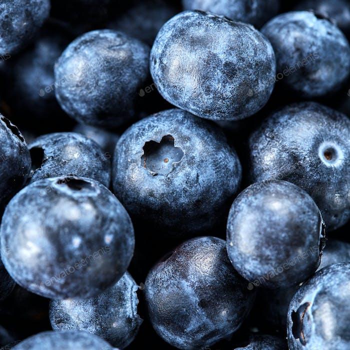 Macro fresh ripe sweet blueberries for preparing fruit jam. Blueberries summer background