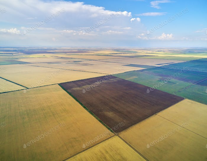 Aerial view of agricultural meadow.