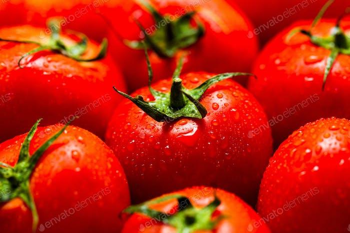 Rote Tomaten mit Wassertropfen
