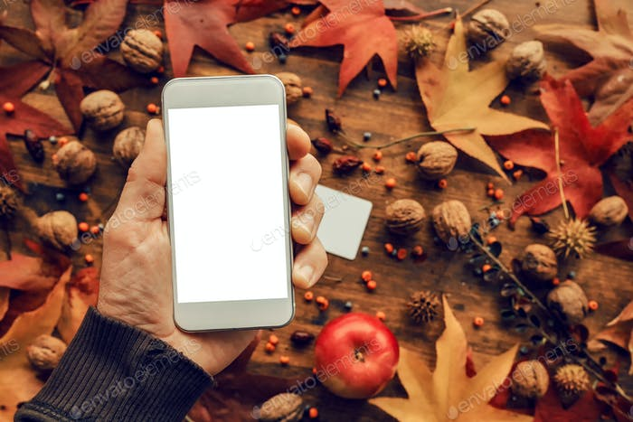 Mock up smartphone in hand with autumn decoration