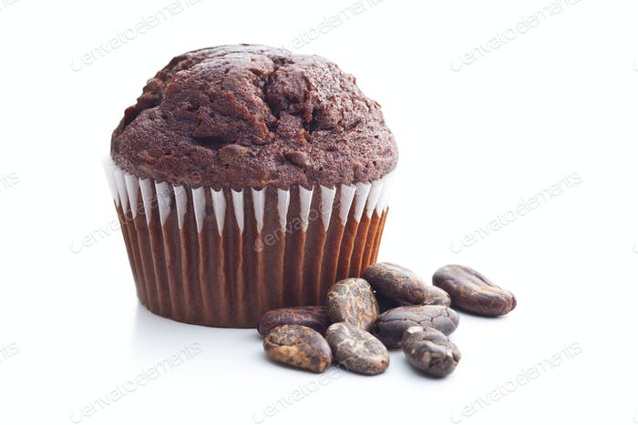 The tasty chocolate muffin and cocoa beans.