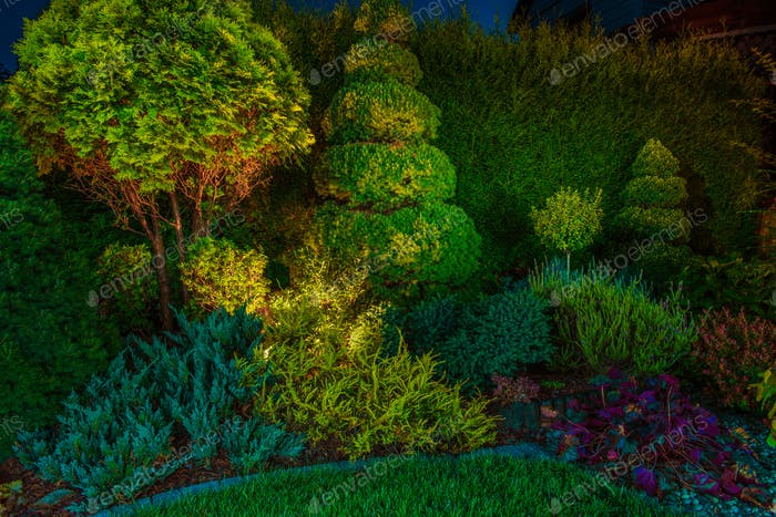 Garden Led Lighting Illumination