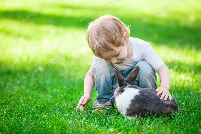 Little boy playing with rabbit. Rabbit in focus