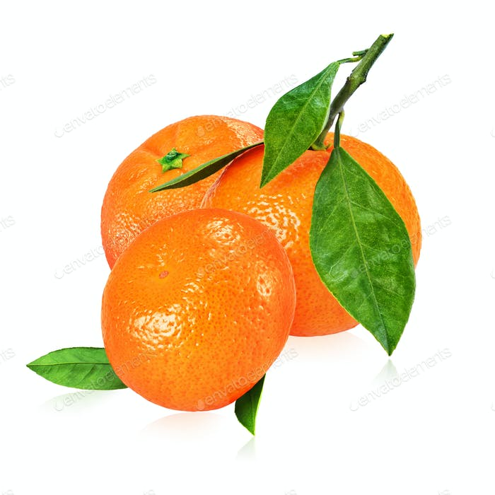 Heap of ripe mandarins with leaves isolated on white