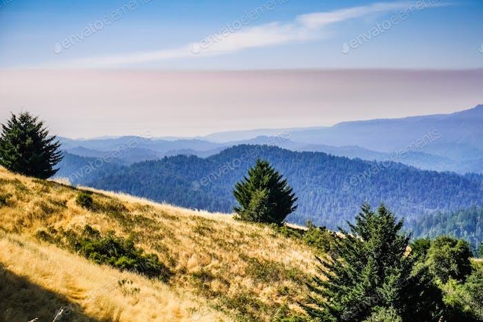 Landscape in Santa Cruz mountains