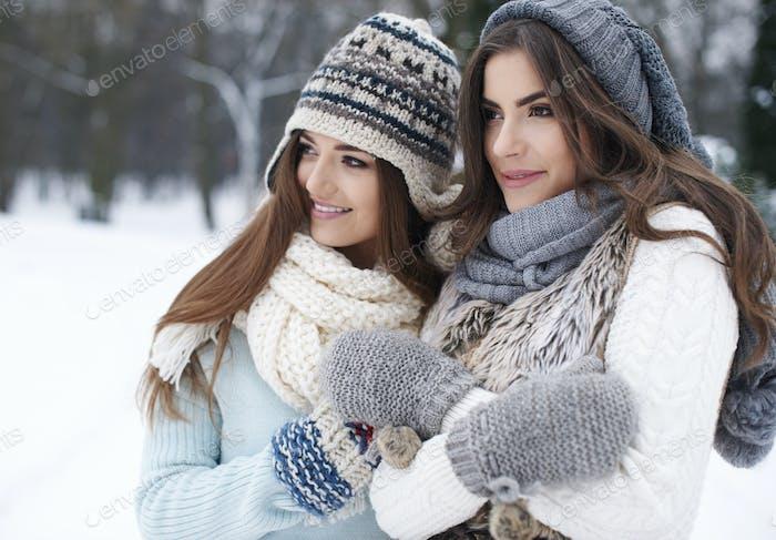Warmed by friendship in winter
