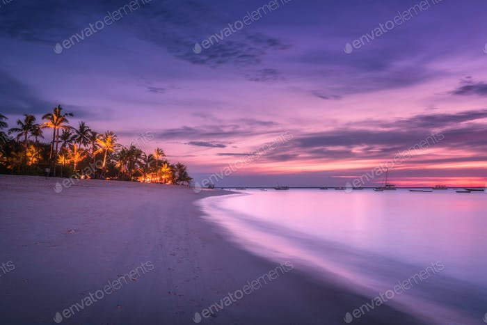 Sandy beach with palm trees at colorful sunset in summer