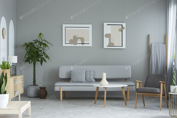 Posters above grey sofa in minimal living room interior with pla