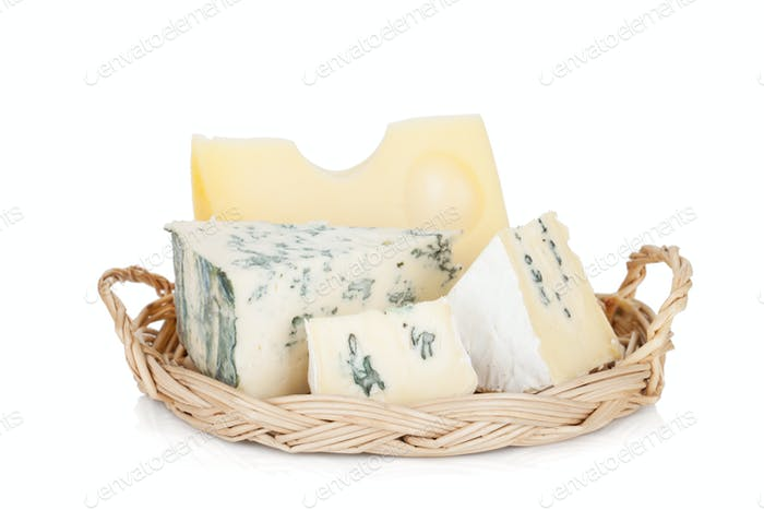 Various types of cheeses