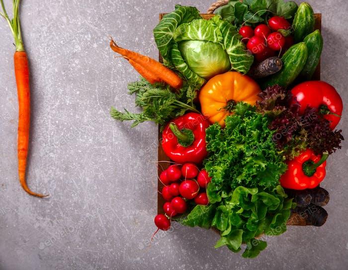 Hintergrund von Gemüse.Verschiedene frische Farm Gemüse. Ernte.
