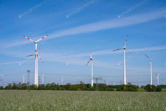 Wind park in a rural area