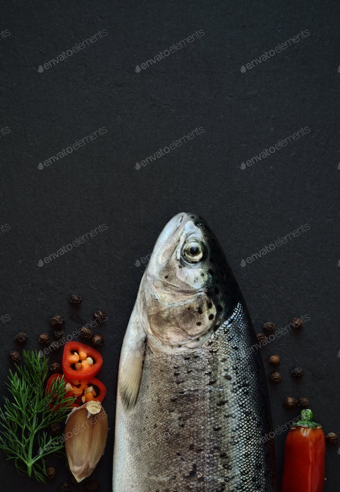 Fresh trout fish
