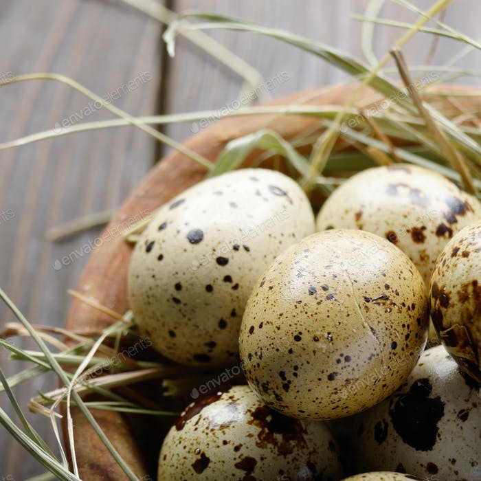 Fresh organic quail eggs in wooden bowl on rustic kitchen table.