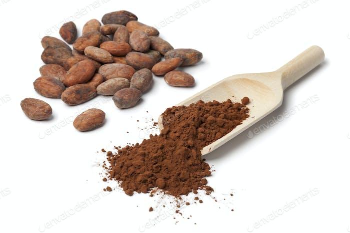 Cocao beans