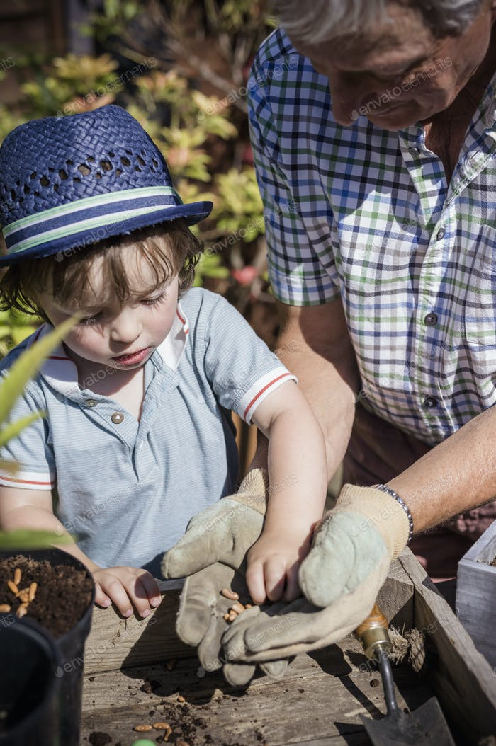 Man and a young child gardening, planting seeds.