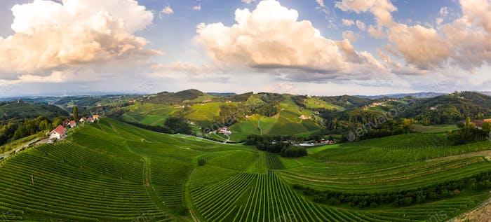South styria vineyards aerial panorama landscape, near Gamlitz, Austria, Eckberg, Europe. Grape