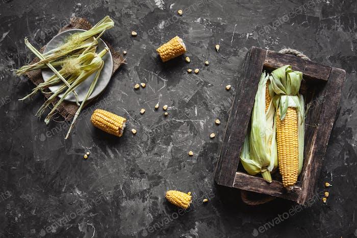 Gegrillte Maiskolben mit Sauce, Coriande. Mexikanisches Essen. Draufsicht. Kopierraum, gesundes Essen, Gemüse