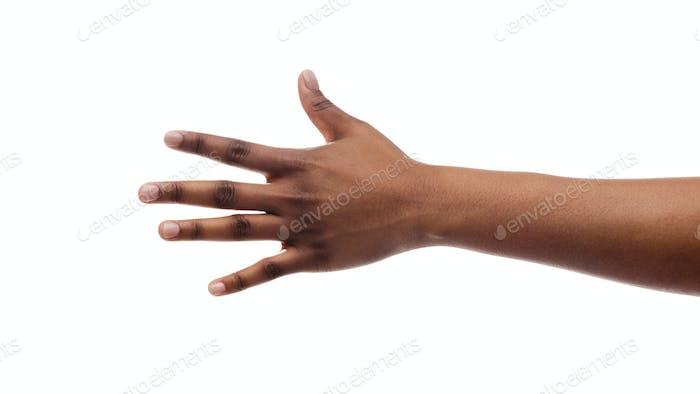 Weibliche Hand zeigt Nummer fünf mit Finger auf weißem Hintergrund