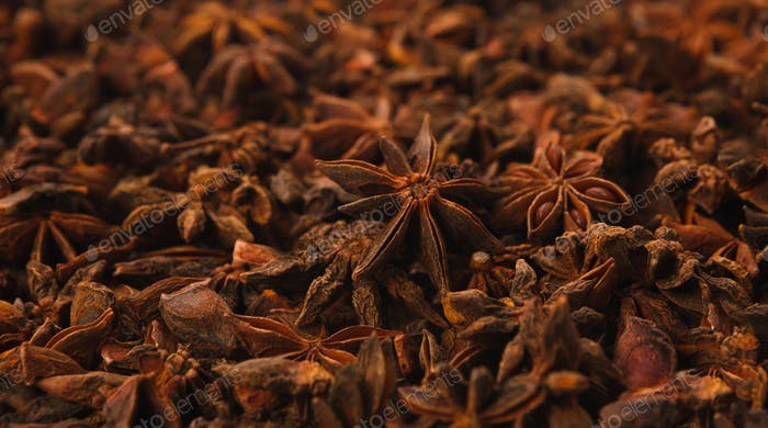 Background texture of star anise fruits and seeds