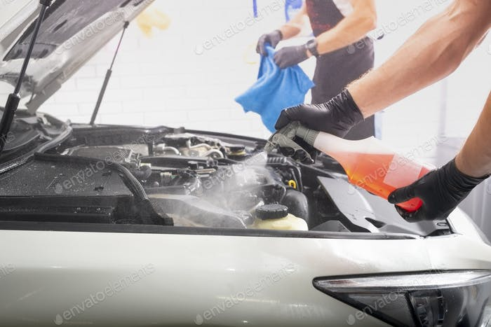 Car detailing cleaning washing engine maintenance
