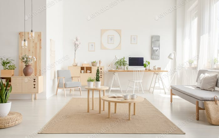 Plant on pouf near wooden tables on brown carpet in spacious whi