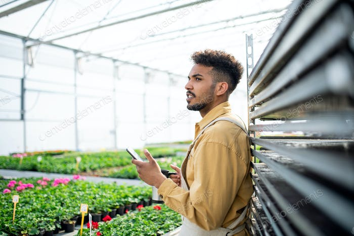 Young african-american man working in greenhouse, having a coffee break