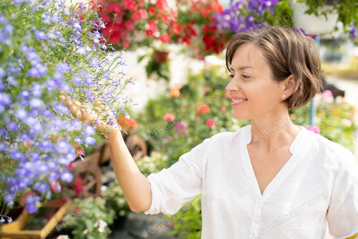 Young cheerful florist looking at bunch of blue tiny flowers in garden center