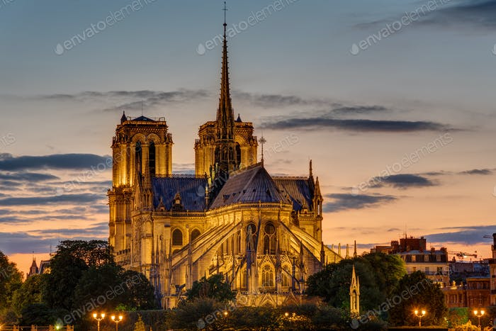Backside of Notre Dame at dawn
