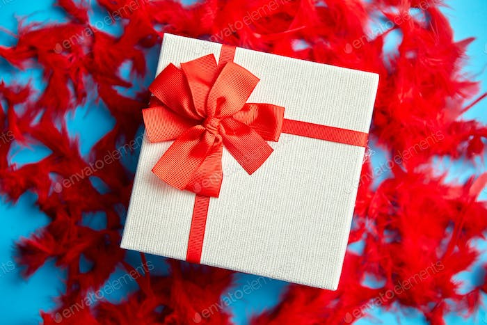 Box with a gift, tied with a ribbon placed on red feathers