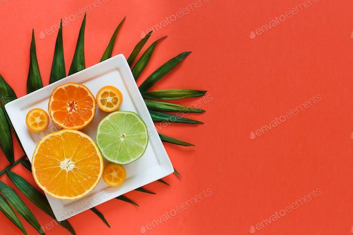 Zitrusfrüchte auf einem korallenroten Hintergrund