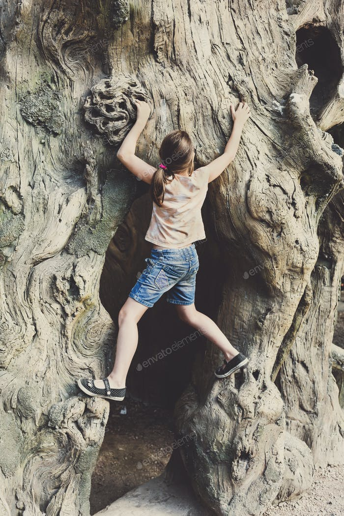 Girl child outdoors climb tree