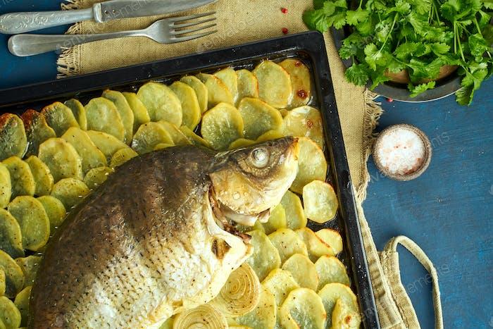 Gebackener Karpfen, ganzer Fisch aus dem Ofen mit geschnittenen Kartoffeln auf einem großen Tablett. Traditionelles Politurgericht
