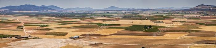 Fields around Consuegra