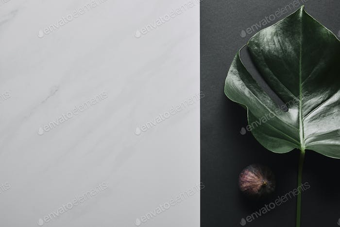 Black paper with monstera leaf and fig fruit on white marble background