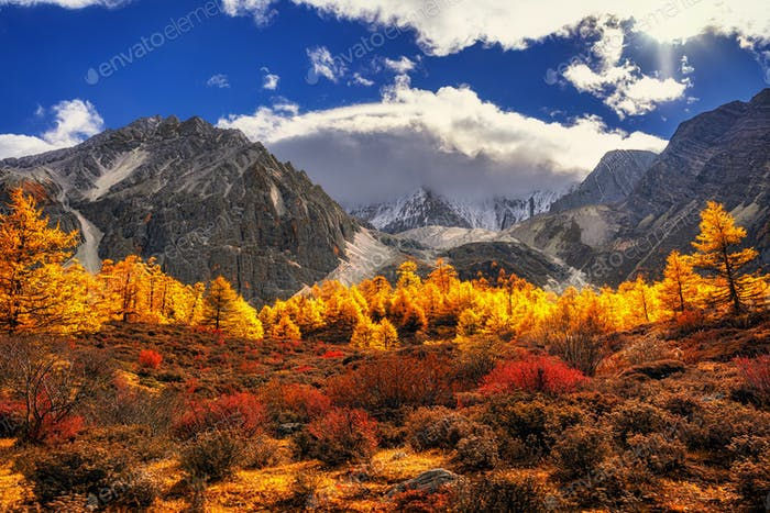 The mountain in autumn season in yading nature reserve, Daocheng County,