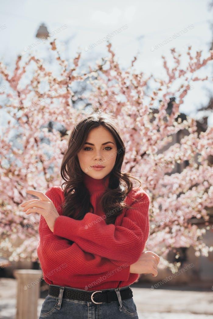 Gorgeous girl in sweater posing in garden of sakuras. Lady looking into camera. Portrait of teen in