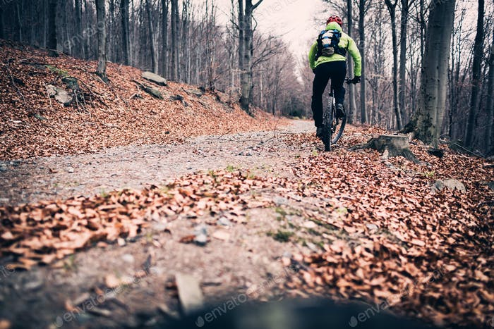 Mountainbiker Radfahren auf Trail im Wald