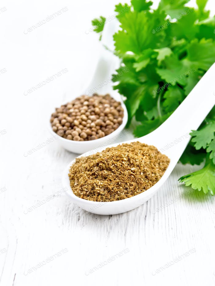 Coriander ground and seeds in spoons on white board