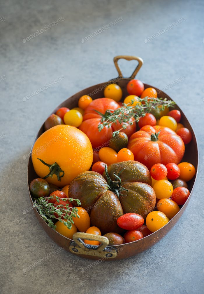 Heirloom tomatoes in vintage pot