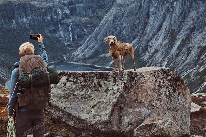 Tourist male with his cute dog standing on top of the Norwegian fjord.