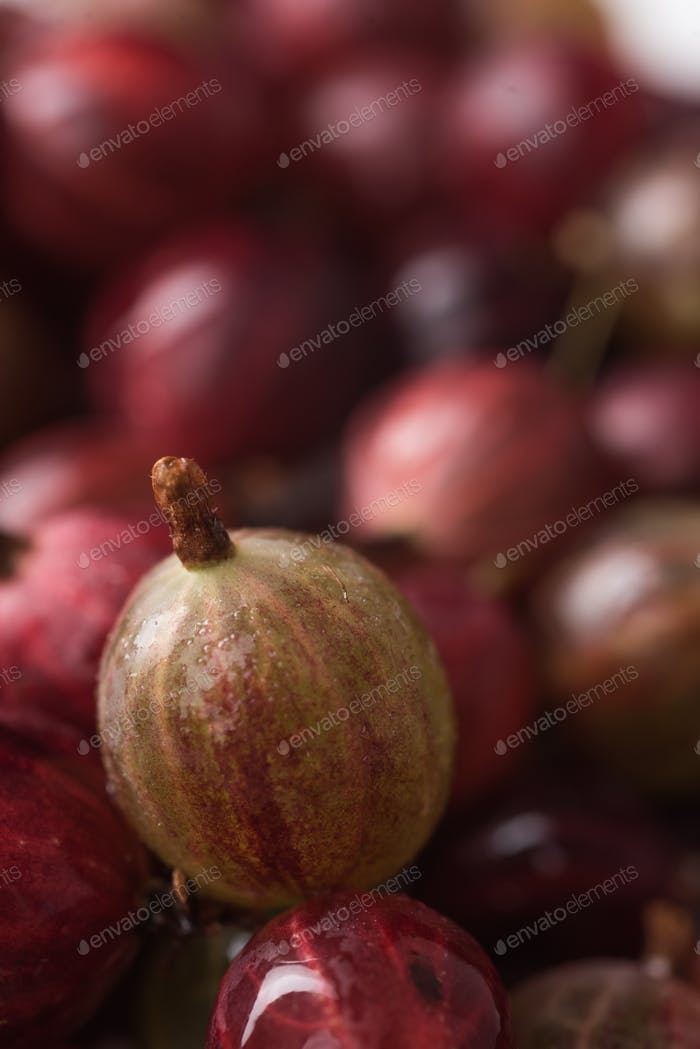 Closeup picture of the gooseberry.