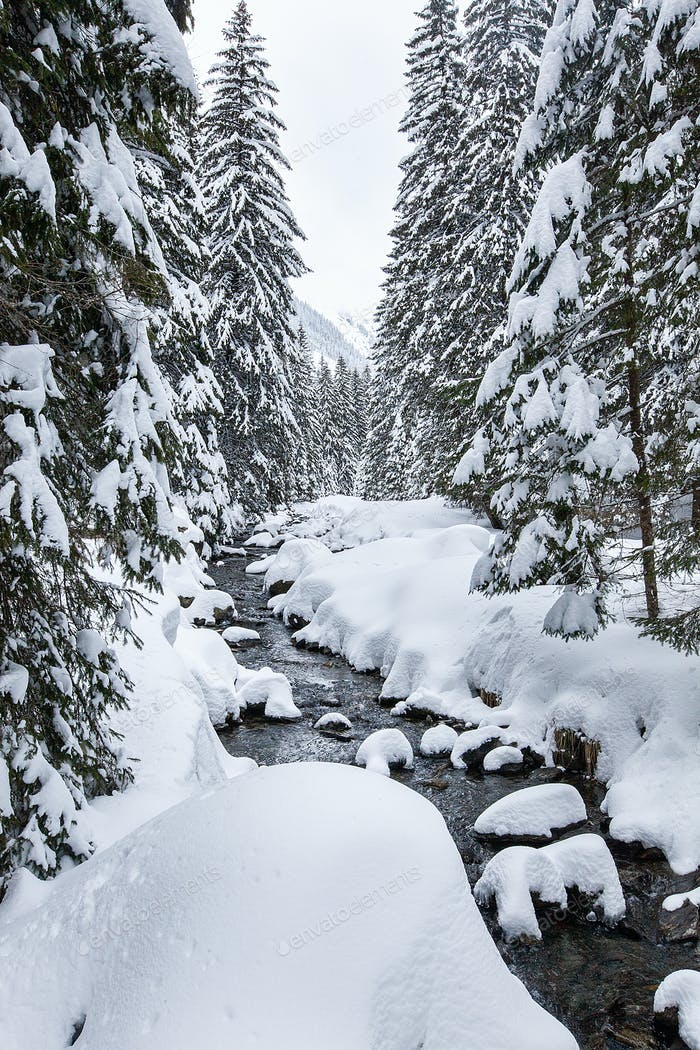 Turbulent river rapids in pictoresque forest during winter