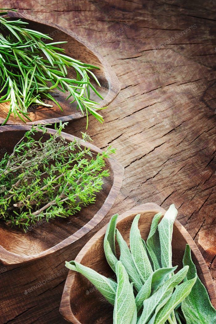 Thumbnail for Herbs