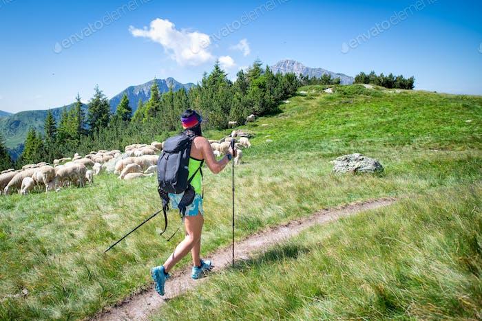 Chica en una caminata de montaña