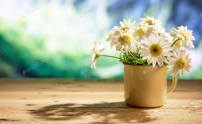 Daisies on wooden table, blur nature background, copy space